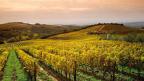 Chianti at Sunset With Dinner Experience from Siena, Siena, Dining Experiences