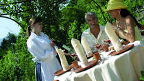 Dinner in the Chianti Vineyards from Florence, Florence, Dining Experiences