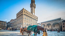 Florence in a day: Uffizi, Accademia, Florence center and Hills, Florence, Cultural Tours