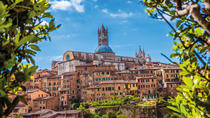 Full Day Tuscan Countryside Tour from Florence, Florence, Day Trips
