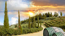 Half-Day Afternoon Chianti Tour from Montecatini, Montecatini Terme, Half-day Tours