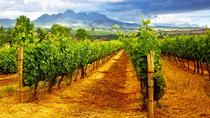 Half-Day Afternoon Chianti Tour from Montecatini