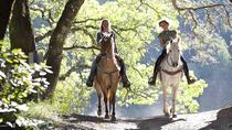 Horseback Riding from Livorno with Lunch, Livorno, Horseback Riding