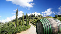 Tour of the Chianti Region and Brunello Wine Tasting from San Gimignano, San Gimignano, Wine ...