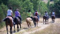 Tuscan Hills Horseback Riding Tour from Siena, Siena
