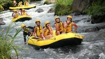 Combinations Tours - Rafting et Village d'Ubud, Kuta, White Water Rafting