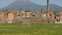 Pompeii and Mount Vesuvius Day Trip from Naples Port, Naples, Private Sightseeing Tours
