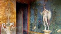 Pompeii and Naples City Tour, Naples, Hop-on Hop-off Tours