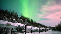 Fairbanks-Evening Aurora Viewing Tour, Fairbanks, Cultural Tours