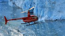 Helicopter Tour and Glacier Landing from Anchorage, Anchorage, Nature & Wildlife