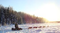 The Iditarod Aurora with Race Checkpoint Fly-Out, Anchorage