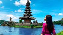 Best of Bedugul: Ulun Danu Temple, Gitgit, Twin Lake, Jatiluwih and Coffee Tour, Bali, Coffee & Tea...
