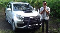 Private Custom Tour: 10-hour Best of Bali Tour, Ubud, Custom Private Tours