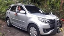 Private Custom Tour: 8-hour Tailor Made Tour of Bali, Ubud, Custom Private Tours