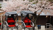 Private Custom Tour: Kyoto in One Day, Kyoto, Walking Tours