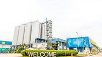 Tiger Brewery Experience, Singapore, Beer & Brewery Tours