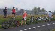 Adventure E-Bike Tour to See The Wonderful Ubud, Ubud, 4WD, ATV & Off-Road Tours