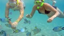 Stradbroke Island Kayak and Snorkeling Tour