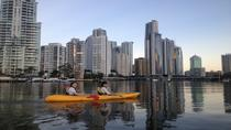 Surfers Paradise Sunset Kayak Tour, Gold Coast, Dolphin & Whale Watching