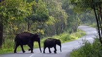 10Night - Kerala & Karnataka Tour - Luxury Honeymoon, Kochi, Honeymoon Packages