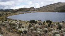 Hike to Sumapaz Moorlands, Bogotá, Hiking & Camping
