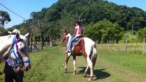 Harvest Caye Horseback Riding and Waterfall Swim Excursion from Placencia, Placencia, Horseback ...