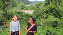Suan Lahu Coffee and Tribal Experience from Chiang Mai