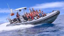 Sculpture Snorkel and Powerboat Sightseeing Tour in Grenada, Grenada