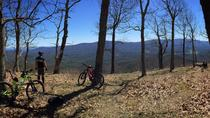 Mountain Biking Adventure on Narrowback Mountain, Richmond, Bike & Mountain Bike Tours