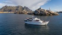 Breathtaking fjord cruise on a presidential yacht, Tromso, Day Cruises