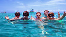 Cozumel Coral Reef Snorkeling by Glass Bottom Boat with Guide, Cozumel, Snorkeling