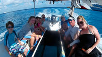 Snorkeling day at Cozumel from Playa del Carmen by Glass Boat, Cozumel, Glass Bottom Boat Tours
