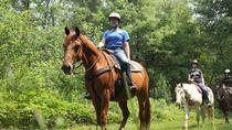 Horseback Ride of Playa Serena, Punta Cana, Horseback Riding