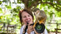 Monkey Land and Ecotrail Tour, Punta Cana, Nature & Wildlife