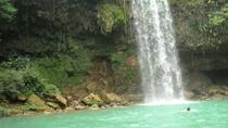 Private Helicopter Tour to Salto La Jalda Waterfalls, Punta Cana, Helicopter Tours