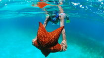 The 5 Pearls of the Caribbean - Saona Island Tour, La Romana, Day Trips