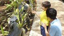 McBryde Garden Self Guided Tour, Kauai, Self-guided Tours & Rentals