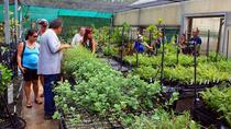 South Shore Combination Garden Guided Tour, Kauai, Walking Tours
