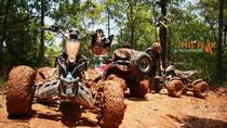 Jungle Excursion ATV Passenger