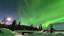Arctic Circle and Northern Lights Tour from Fairbanks, Fairbanks, null