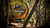 Blue Derby Pods Ride Experience 3-Day Mountain Bike Adventure in Exclusive Pods, ローンセストン