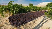Sunset Cappadocia Tour Including Wine Tasting and Valley Hike, Cappadocia, Wine Tasting & Winery...