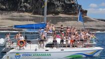 Most Famous Catamaran in Tenerife Island (2 hours and 3 hours tours), Canary Islands, Catamaran...