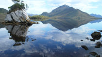 Tasmania Wilderness Experience: Southwest National Park by Air with Bush Walk and Harbor Cruise, ...