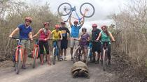 10-Day Galapagos Multi-Sport, Quito, Multi-day Tours