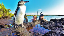 THE BEST OF ECUADOR & GALAPAGOS ACTIVE EXCURSION 11 DAYS, Quito, 4WD, ATV & Off-Road Tours