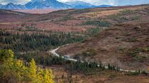 Denali Backcountry Adventure, Denali National Park, 4WD, ATV & Off-Road Tours