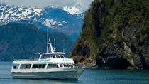 Kenai Fjords National Park Cruise from Seward, Seward, Dolphin & Whale Watching
