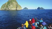 Seward Shore Excursion: Resurrection Bay Cruise Including Lunch on Fox Island, Seward, Port ...