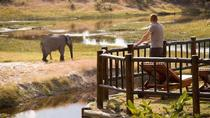 Four nights at one of the most luxurious lodges in northern Botswana, Maun, Multi-day Tours